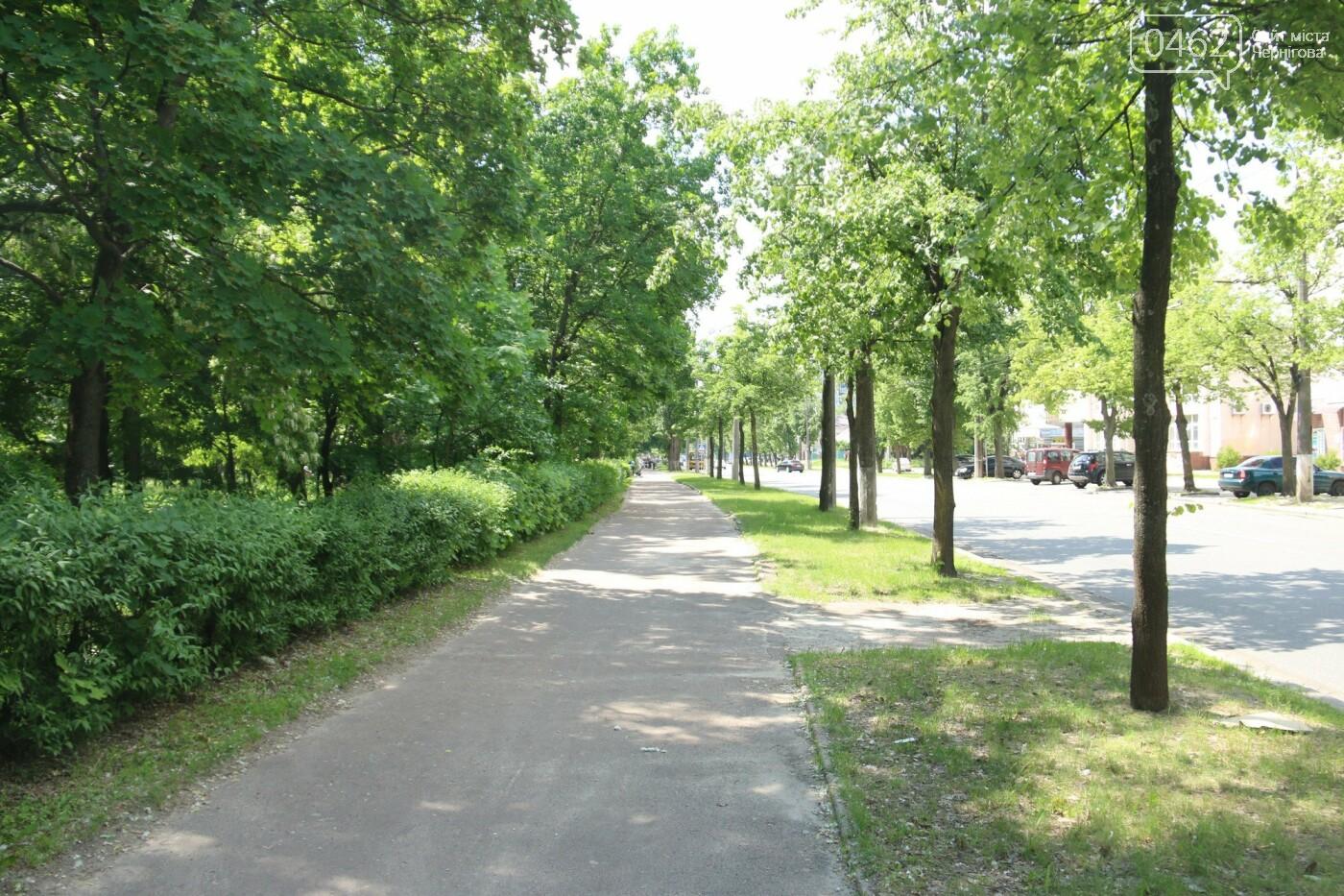 У Чернігові розпочався ремонт тротуарів на вулиці Шевченка, фото-6