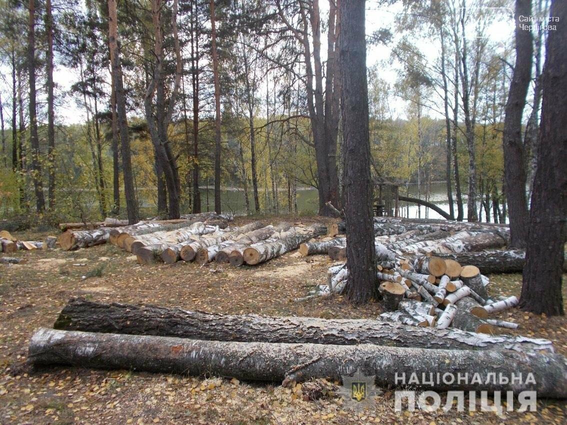 Зпиляли майже пів сотні дерев: поліцейські Чернігівщини виявили лісових браконьєрів, фото-1