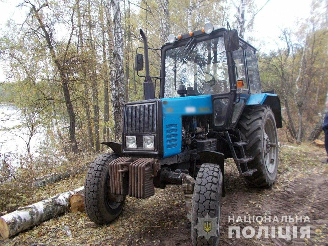 Зпиляли майже пів сотні дерев: поліцейські Чернігівщини виявили лісових браконьєрів, фото-2