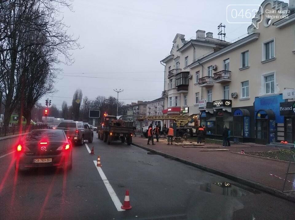 В центрі Чернігова – на перехресті двох проспектів – знесли дерево, фото-1