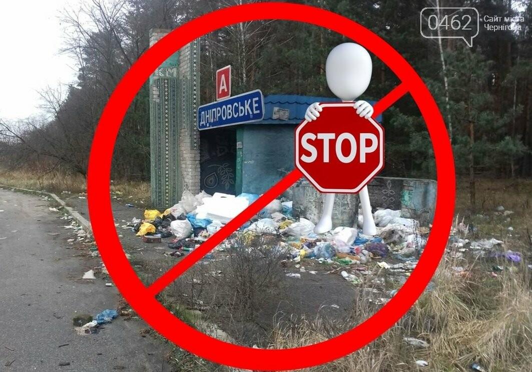 Водії – як свині. Узбіччя доріг в Чернігівській області завалені сміттям, фото-1
