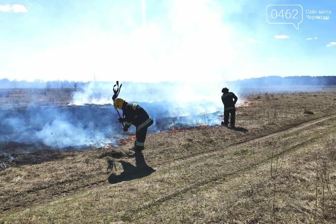 Не паліть траву! Через це в Чернігівській області за добу виникло більше 20 пожеж, фото-1