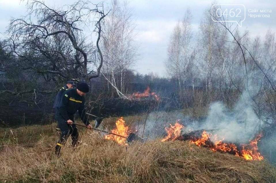Тотальні пожежі в Чернігівській області – 35 за добу, фото-1