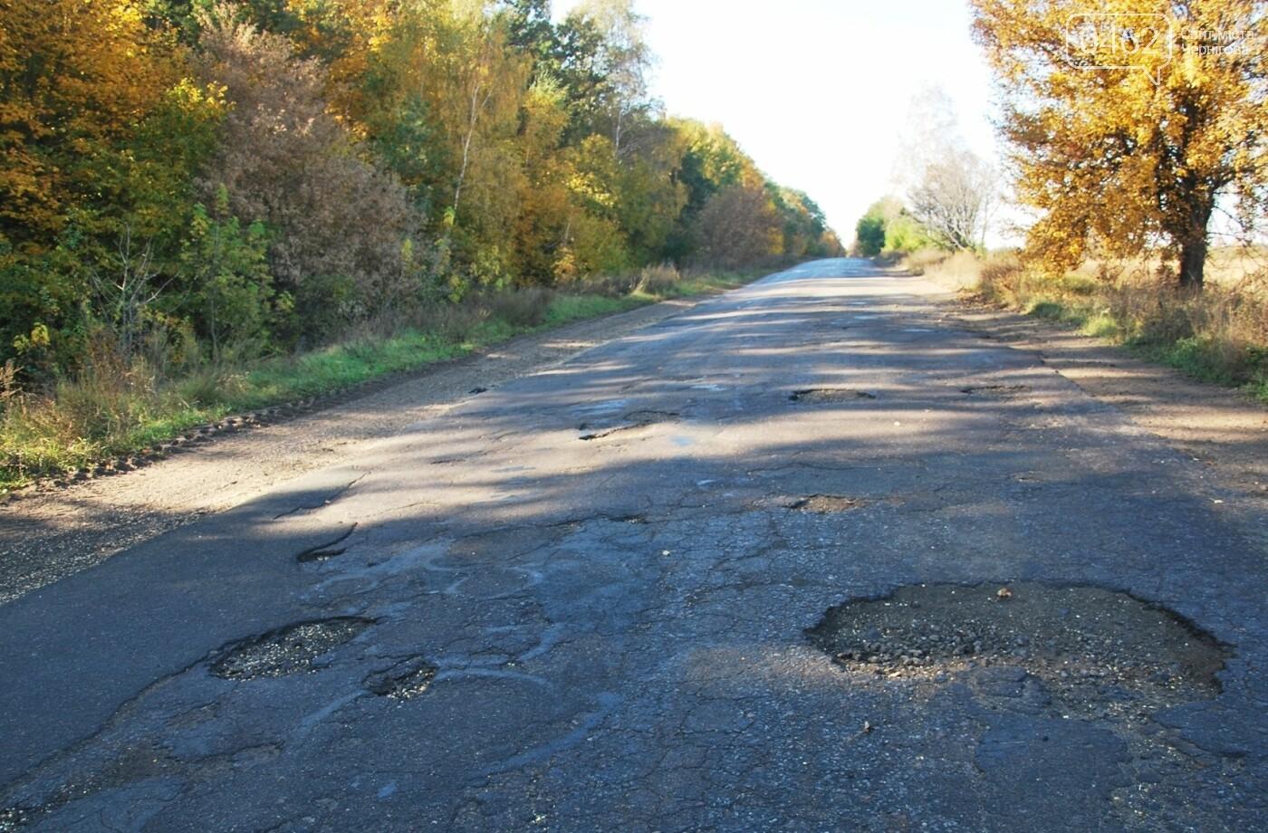 Одну з найбільш жахливих доріг Чернігівської області планують відремонтувати, фото-2