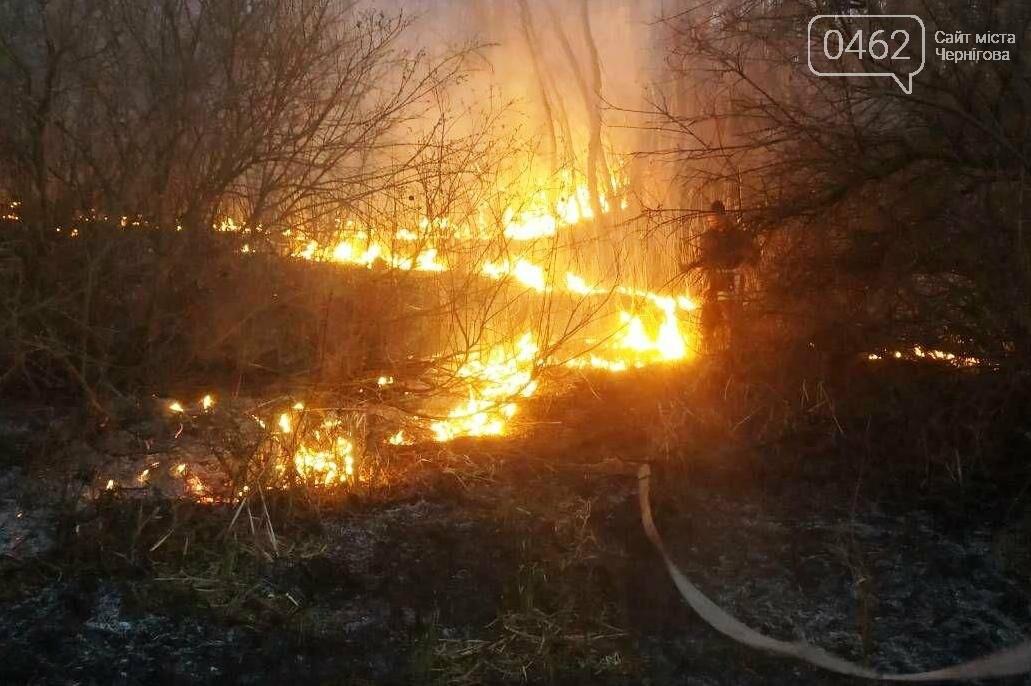 Палив сміття – згорів сам. В Чернігівській області – 32 пожежі за добу, фото-2
