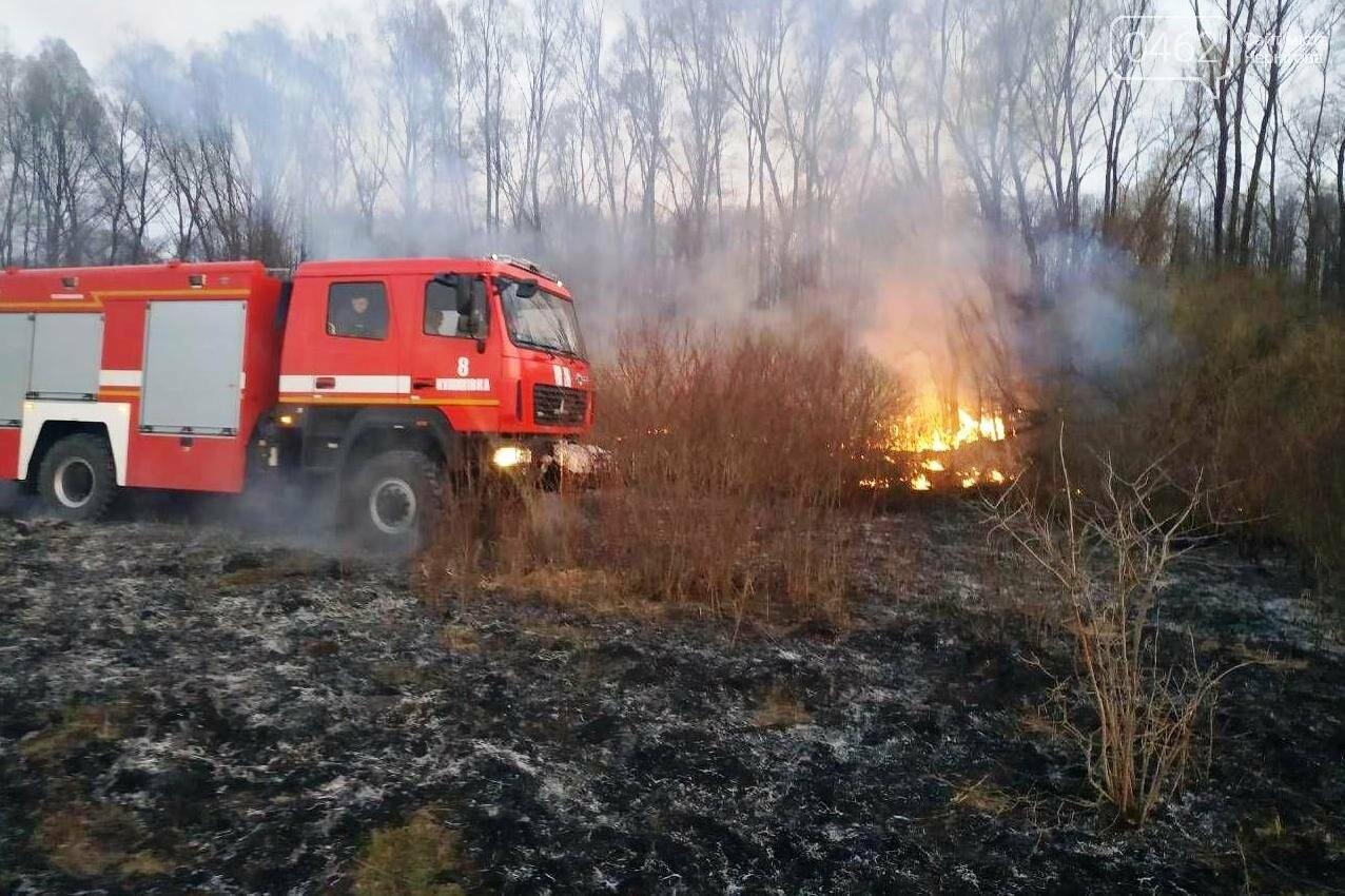 Палив сміття – згорів сам. В Чернігівській області – 32 пожежі за добу, фото-3