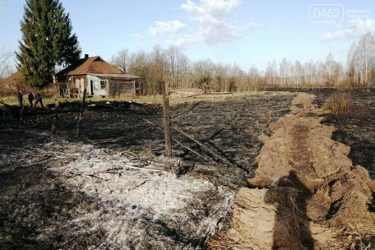 Палив сміття – згорів сам. В Чернігівській області – 32 пожежі за добу, фото-5