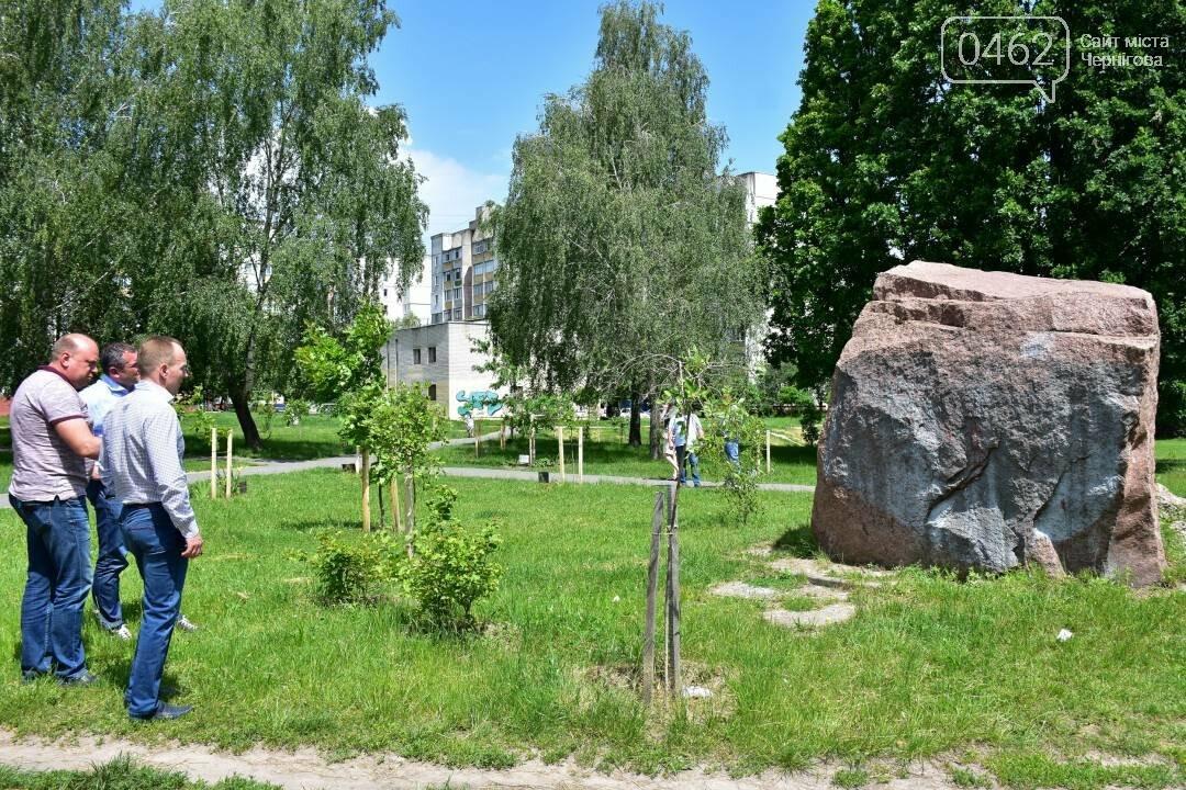 Березовий гай у Чернігові приведуть до ладу, фото-2