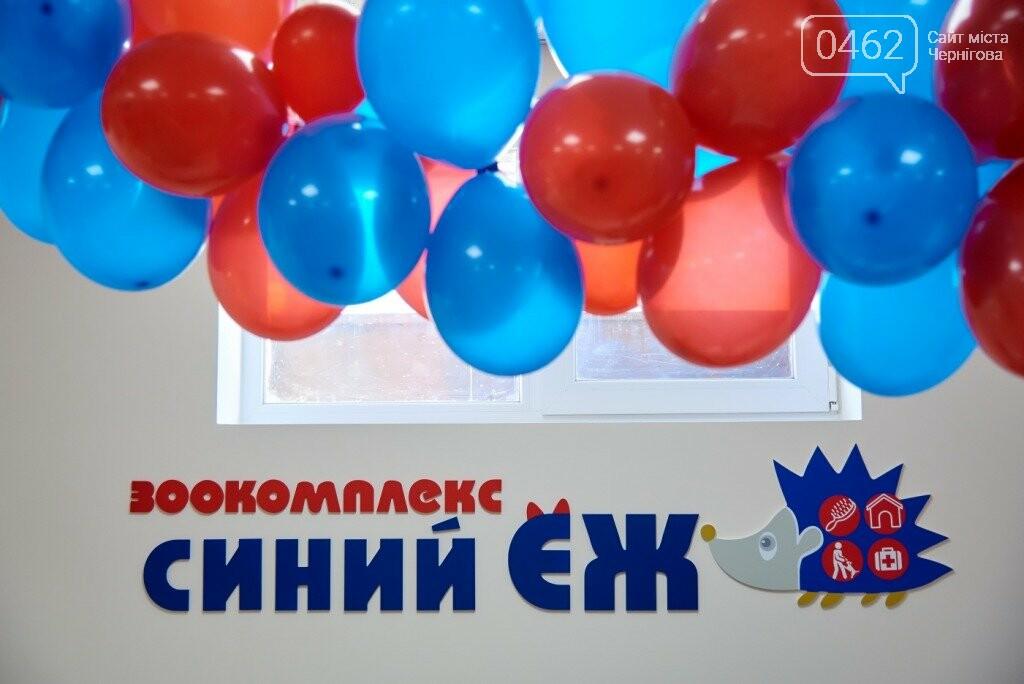 """Фотоконкурс """"Мій домашній улюбленець"""" від сайту 0462.ua та Зоокомплексу """"Синий ёж"""", фото-5"""