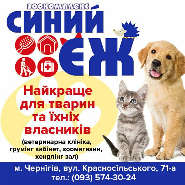 """Фотоконкурс """"Мій домашній улюбленець"""" від сайту 0462.ua та Зоокомплексу """"Синий ёж"""", фото-16"""
