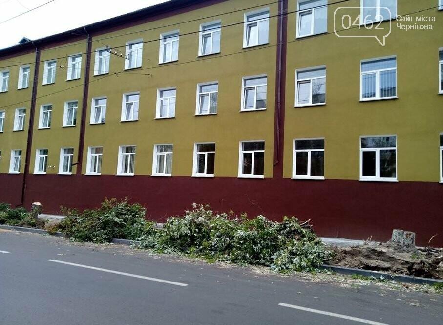 На вулиці Гончій у Чернігові спиляли дерева заради оновлення тротуару, фото-5