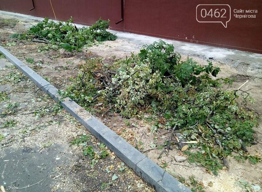 На вулиці Гончій у Чернігові спиляли дерева заради оновлення тротуару, фото-2