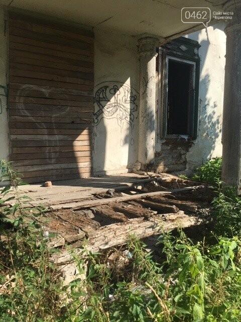 Унікальний туристичний об'єкт у Чернігівській області ось-ось знищать чиновники. Митці вимагають врятувати, фото-6