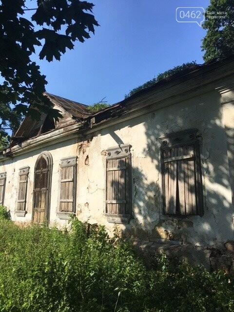 Унікальний туристичний об'єкт у Чернігівській області ось-ось знищать чиновники. Митці вимагають врятувати, фото-8