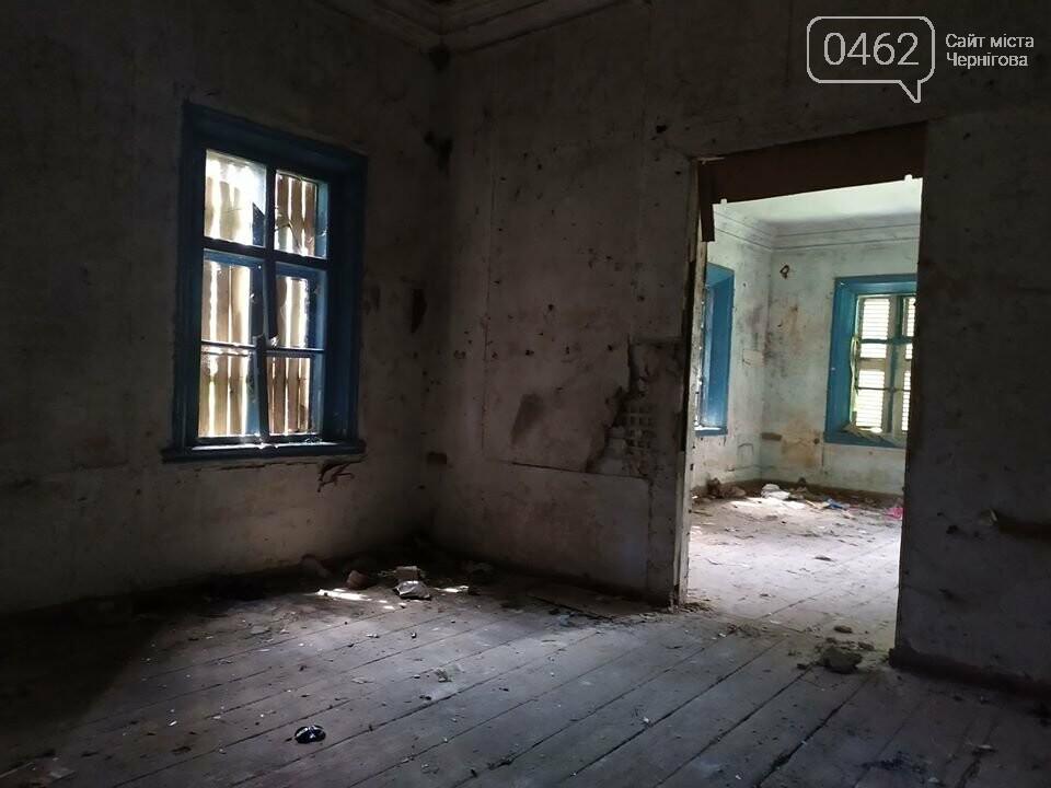 Унікальний туристичний об'єкт у Чернігівській області ось-ось знищать чиновники. Митці вимагають врятувати, фото-3
