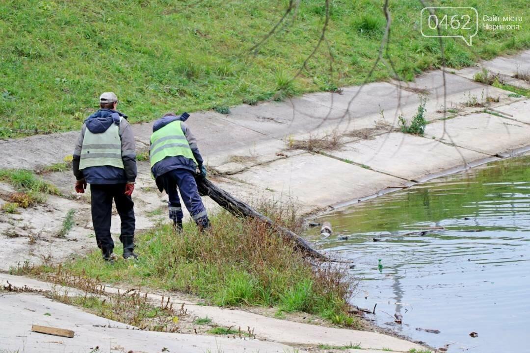 У Чернігові комунальники почистили від сміття дамби, фото-1