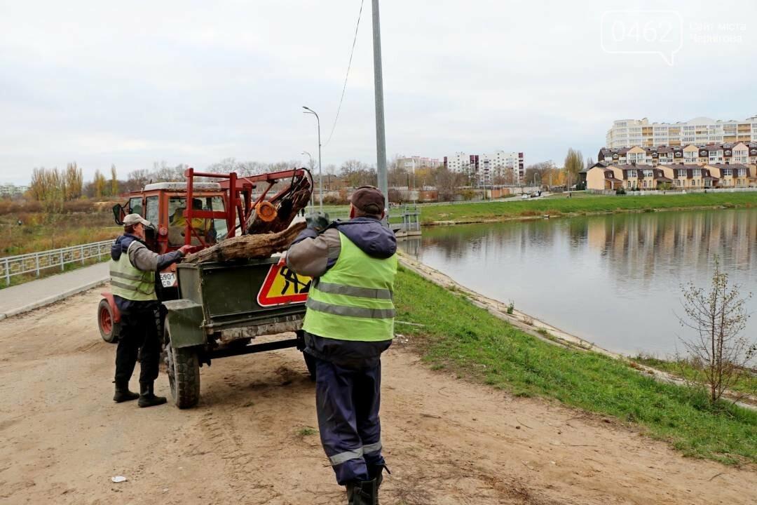 У Чернігові комунальники почистили від сміття дамби, фото-2