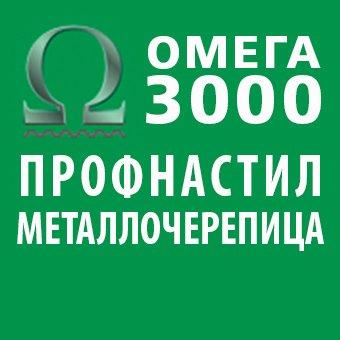 """Логотип - ООО """"Омега 3000"""" (профнастил и металлочерепица)"""