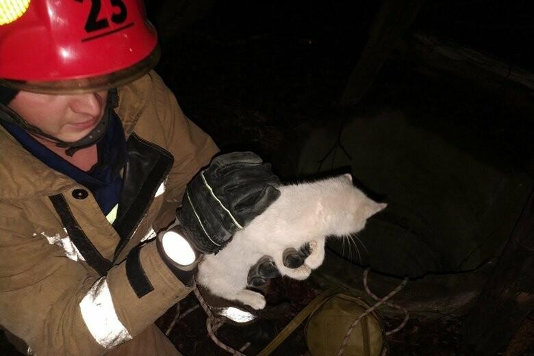Шість діб в колодязі. Чернігівські рятувальники ризикували життям аби