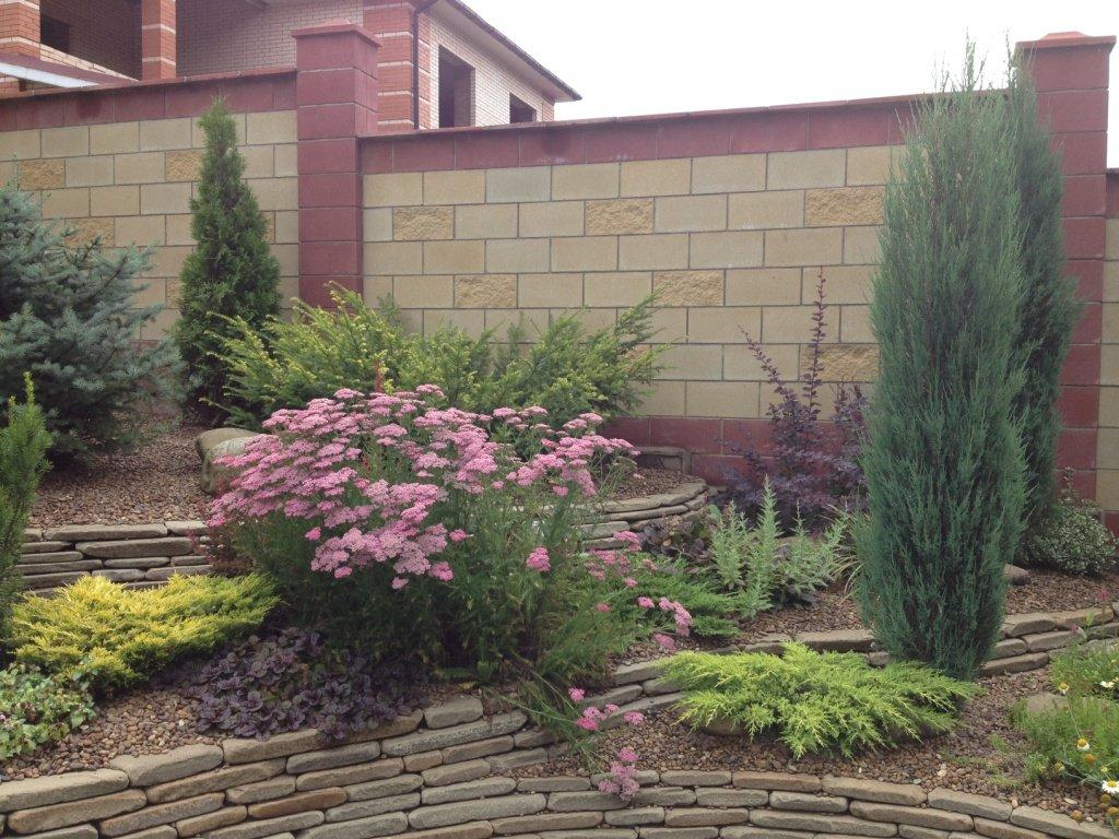 Садовый центр «Art Land» готов предоставить для вас лучшие растения, фото-1