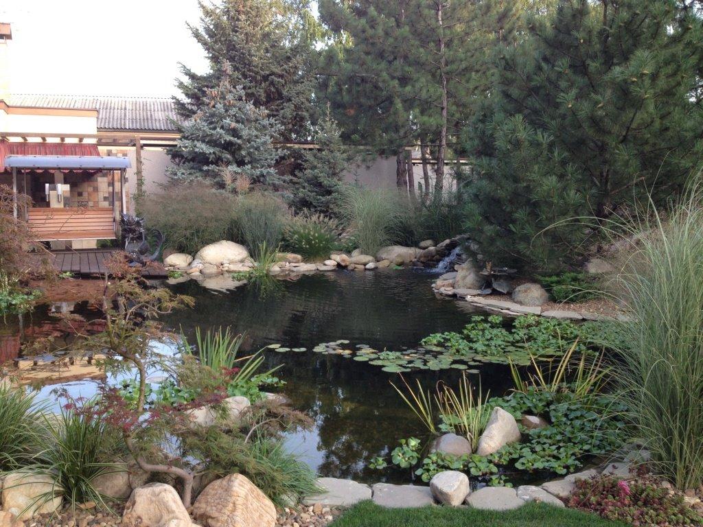 Садовый центр «Art Land» готов предоставить для вас лучшие растения, фото-11