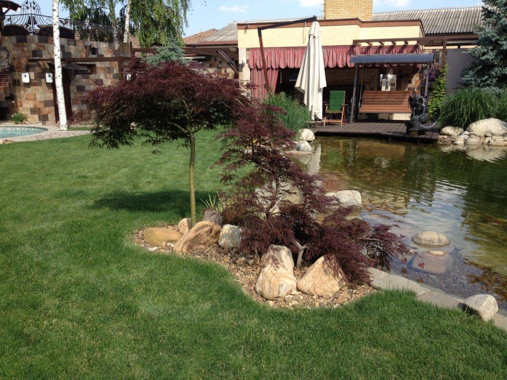 Садовый центр «Art Land» готов предоставить для вас лучшие растения, фото-15