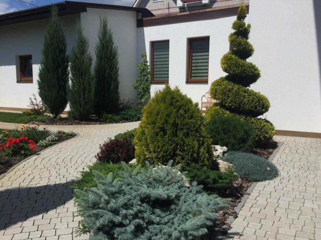Садовый центр «Art Land» готов предоставить для вас лучшие растения, фото-17