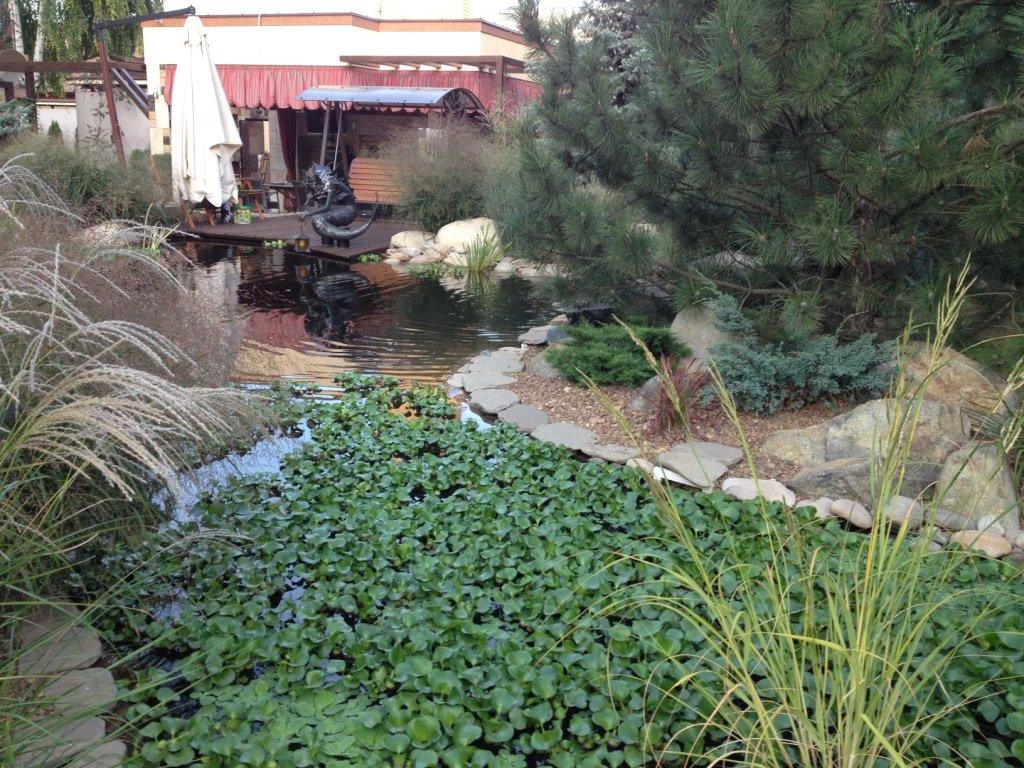 Садовый центр «Art Land» готов предоставить для вас лучшие растения, фото-25