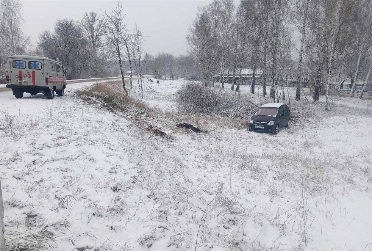 Протащил несколько метров: на Черниговщине в ДТП умерла соцработница, фото-2