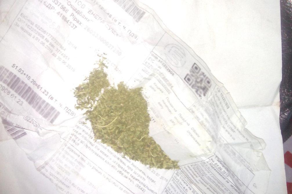 Чернігівські прикордонники знайшли марихуану в автобусі «Київ-Вільнюс», фото-1