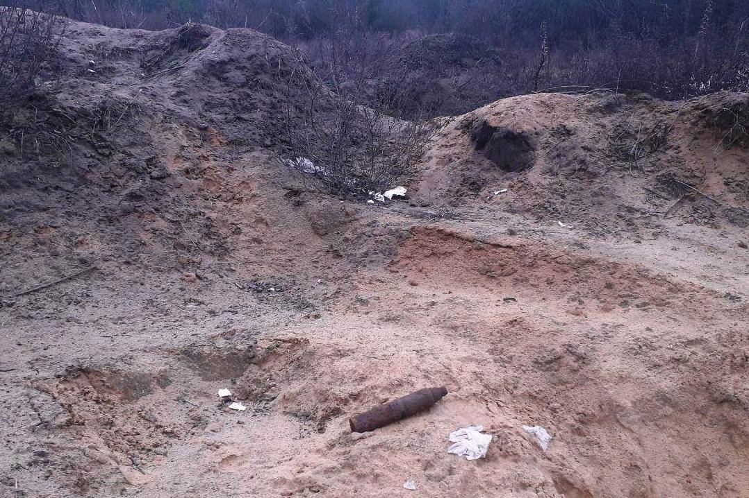 Мина в лесополосе и снаряд на открытой местности: спасатели Черниговщины уничтожили находки, фото-2