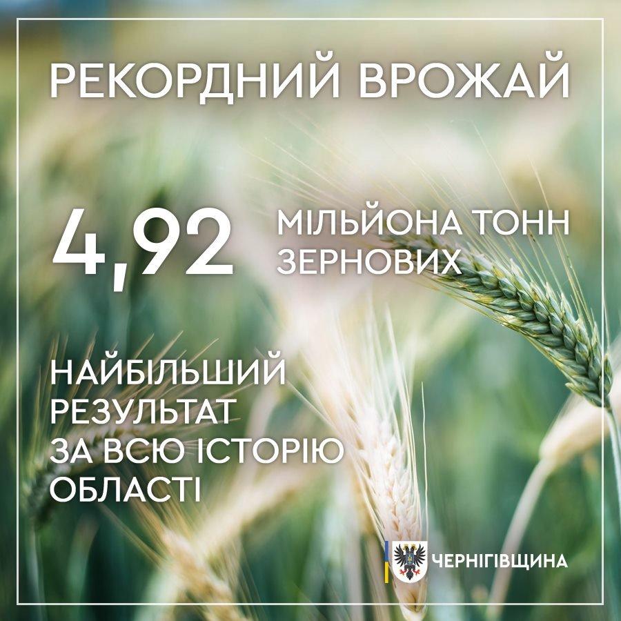 Врожайний рекорд: на Чернігівщині за минулий рік зібрали майже 5 млн тонн зерновх, фото-1