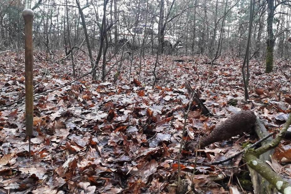 На Чернігівщині знайшли два снаряди та міну часів Другої світової війни, фото-3