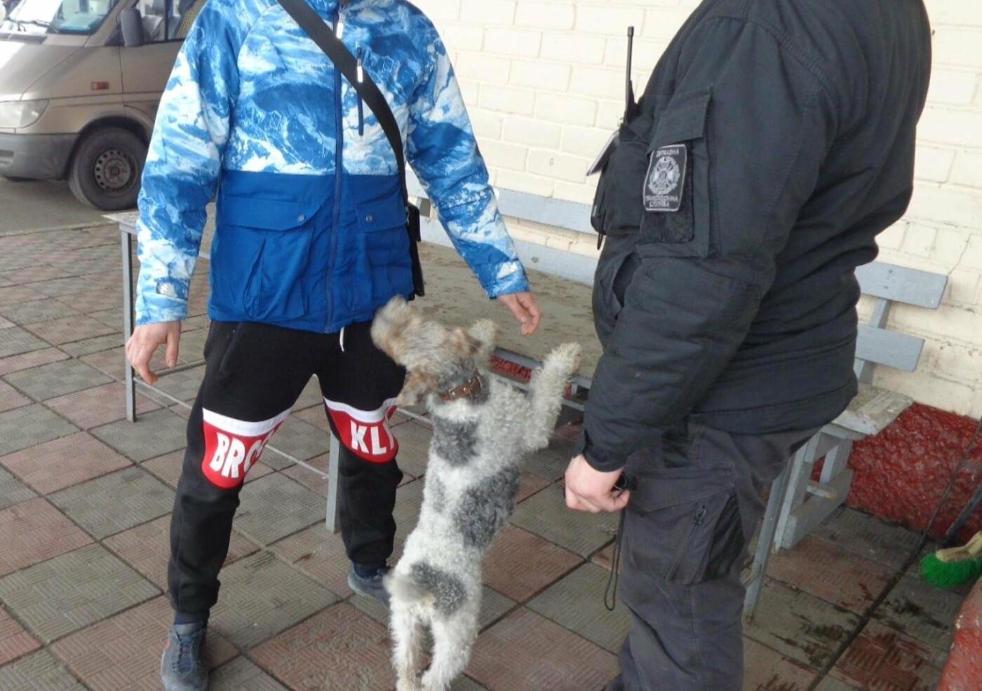 Наркотики на границе: Черниговские пограничники не дали провезти запрещенные вещества, фото-1