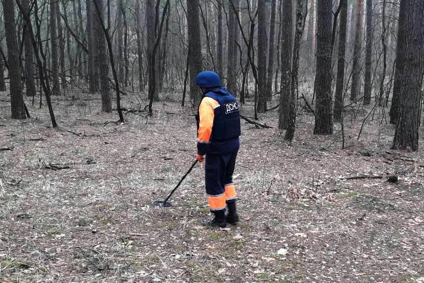 Опасная находка: житель Черниговщины нашел снаряд времен Второй мировой войны, фото-4