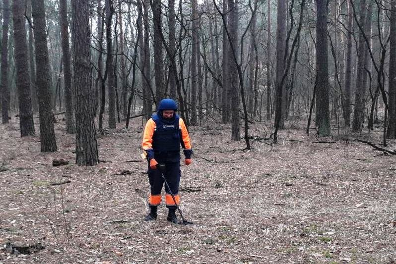 Опасная находка: житель Черниговщины нашел снаряд времен Второй мировой войны, фото-5
