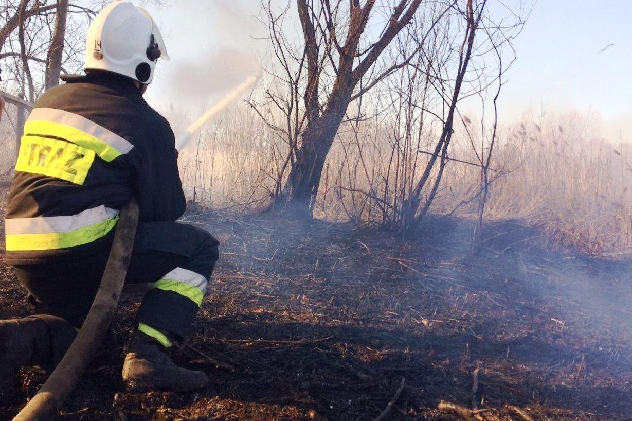 Через людську необережність на Чернігівщині продовжують горіти поля, фото-2