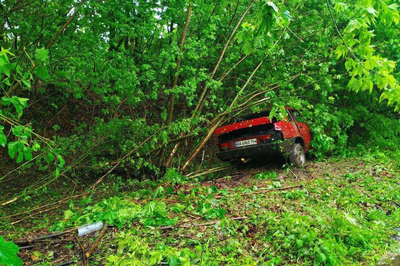 Автівка влетіла у дерево на Чернігівщині: рятувальники прийшли на допомогу, фото-2