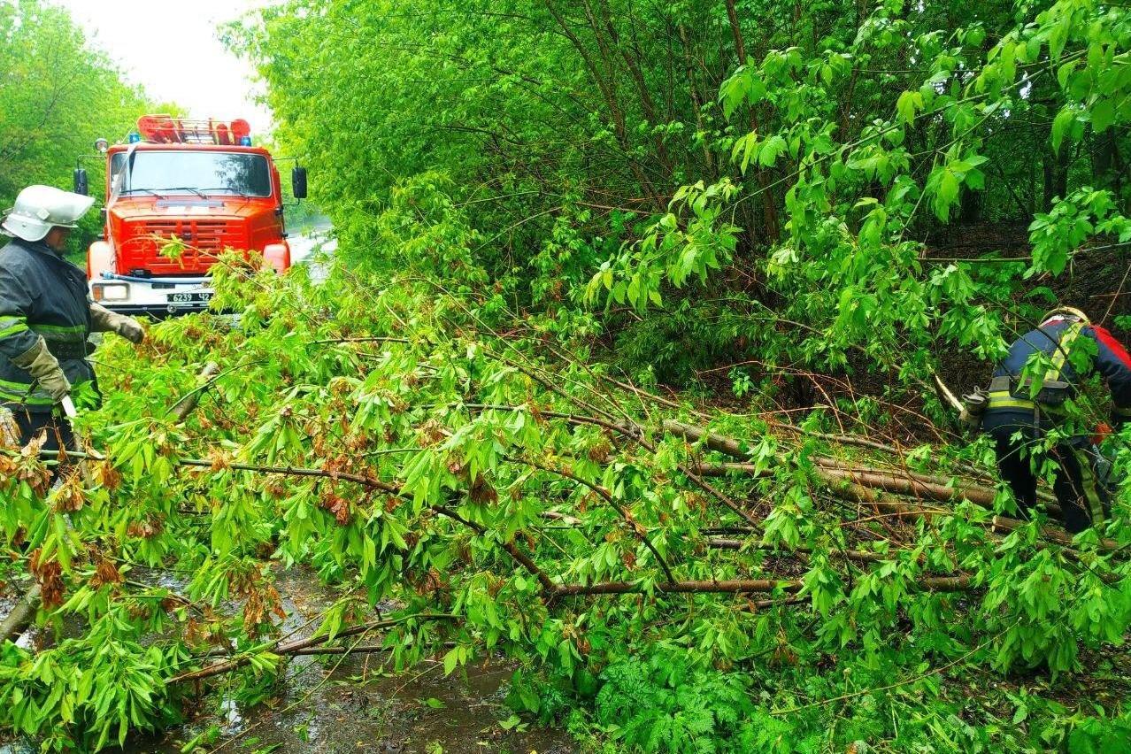 Автівка влетіла у дерево на Чернігівщині: рятувальники прийшли на допомогу, фото-1