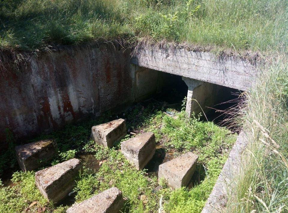 Неподалік Чернігова зникає озеро, фото-3