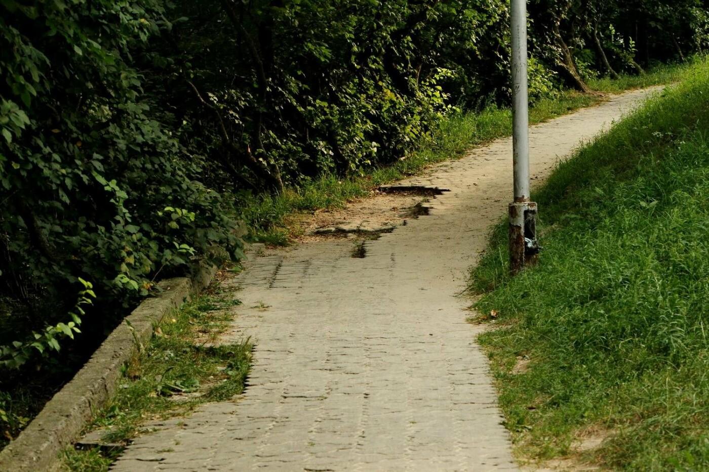 """""""Туристи залишають купу негативних відгуків"""": чернігівці пропонують реконструювати парк на Болдиній горі, фото-3"""