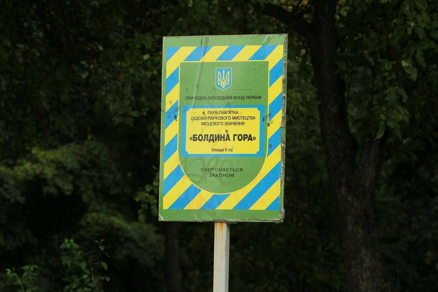 """""""Туристи залишають купу негативних відгуків"""": чернігівці пропонують реконструювати парк на Болдиній горі, фото-1"""