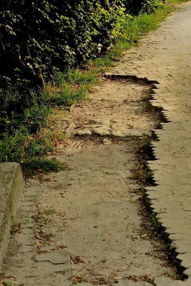 """""""Туристи залишають купу негативних відгуків"""": чернігівці пропонують реконструювати парк на Болдиній горі, фото-6"""