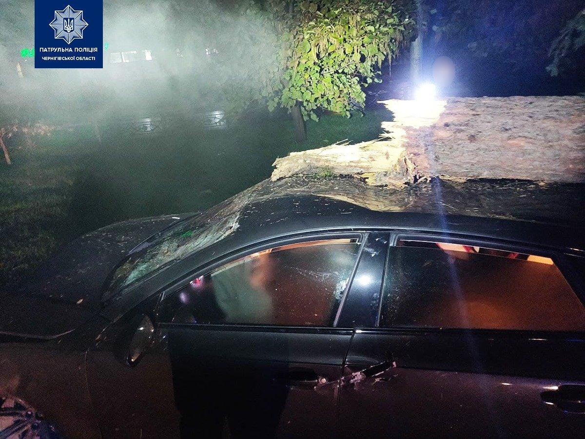 У Чернігові на Кругу машина знесла паркан та ялинку, фото-4