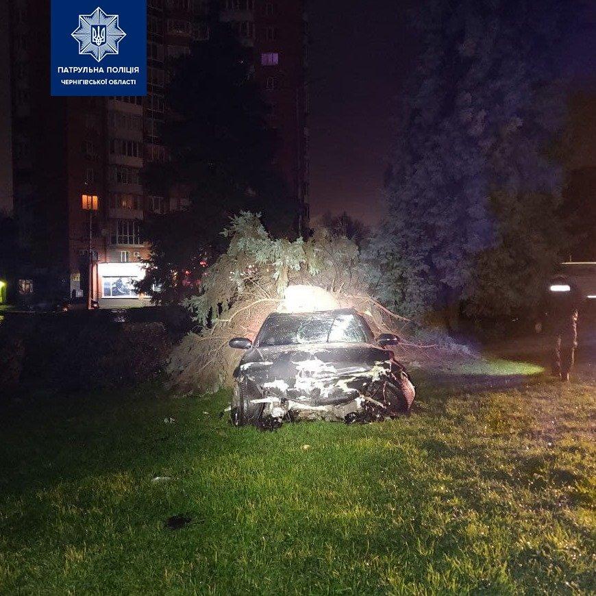 У Чернігові на Кругу машина знесла паркан та ялинку, фото-3