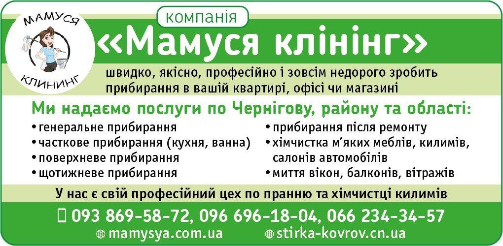 Прибирання квартир, будинків та офісів у Чернігові. Хто допоможе?, фото-16