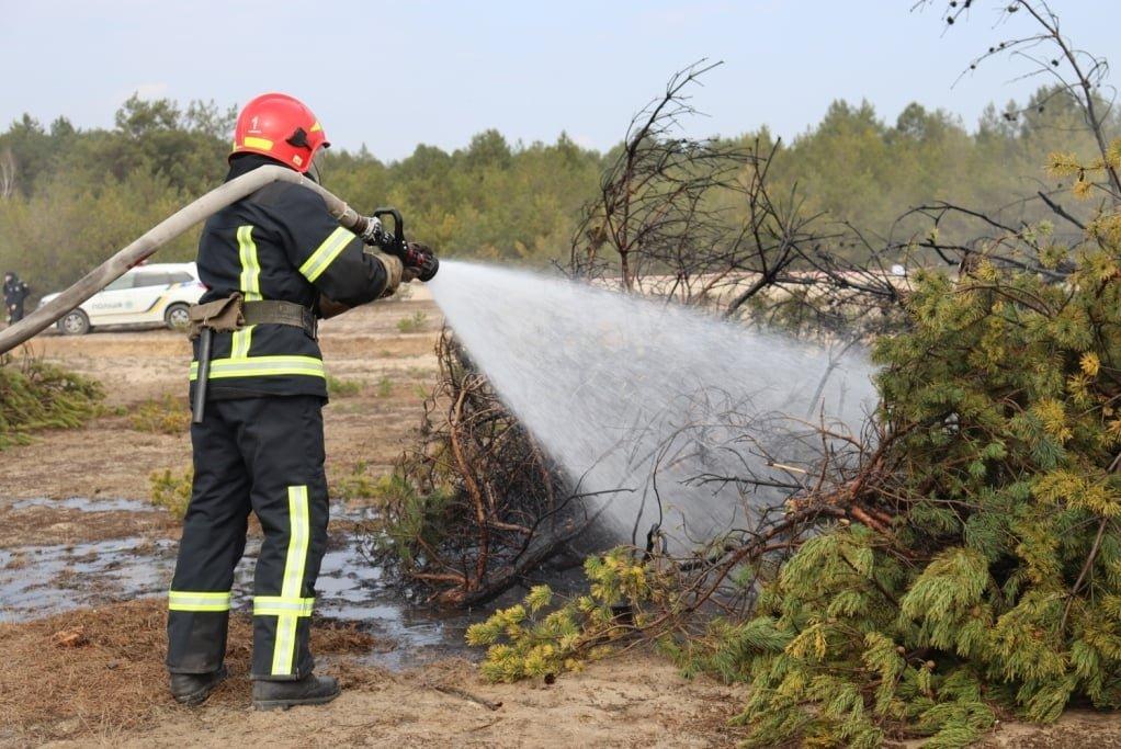 Чернігівські вогнеборці за минулий тиждень ліквідували більше 30 пожеж, фото-2